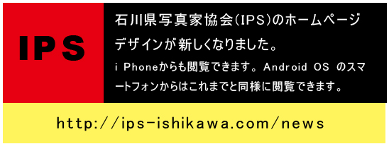 HPtitleweb用